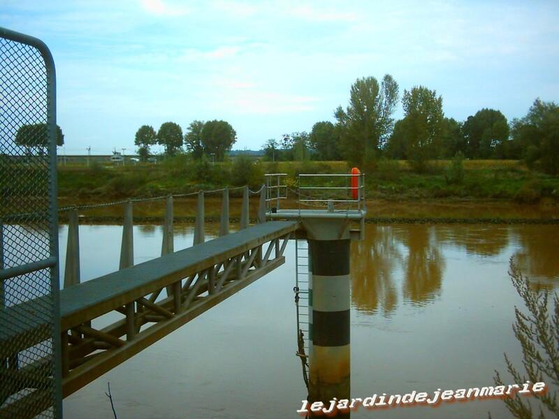 Airbus_;Une imposante grue a été établie en rive gauche (sud) du fleuve pour procéder au déchargement des éléments d'un même avion amenés depuis le port de Bordeaux