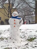 Der Dandy unter den Schneemännern