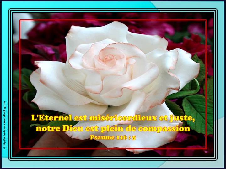 L'Eternel est miséricordieux et juste - Psaumes 116 : 5