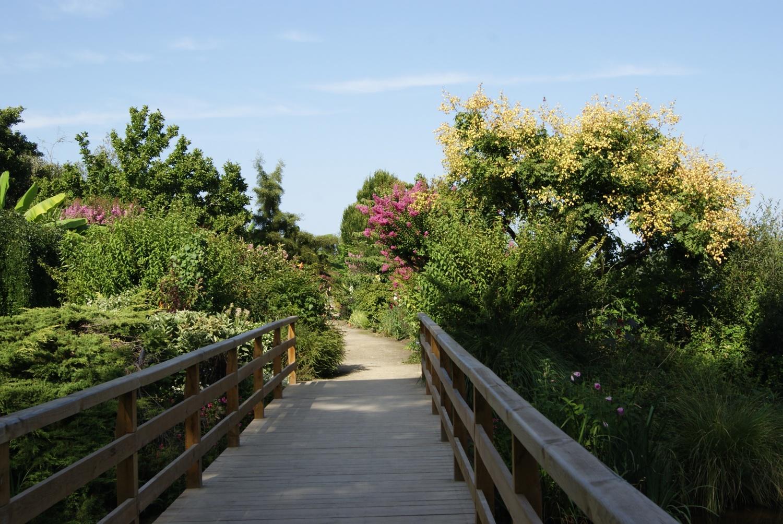 promenade fleurie de mimizan fin août - sable émouvant