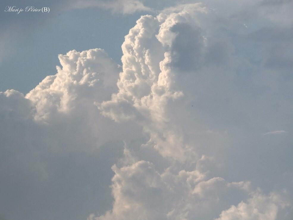 Toujours dans le ciel