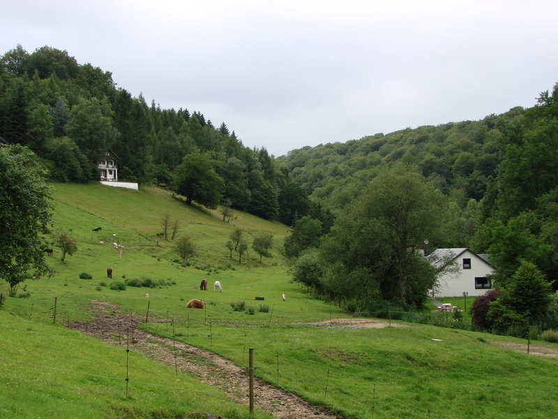 Orval (3)