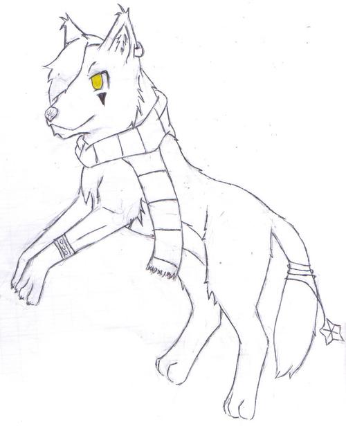 Entrainement sur le dessin de loups