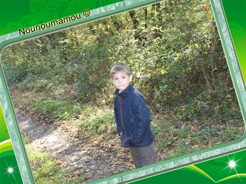 Promenade en forêt avec Baptiste
