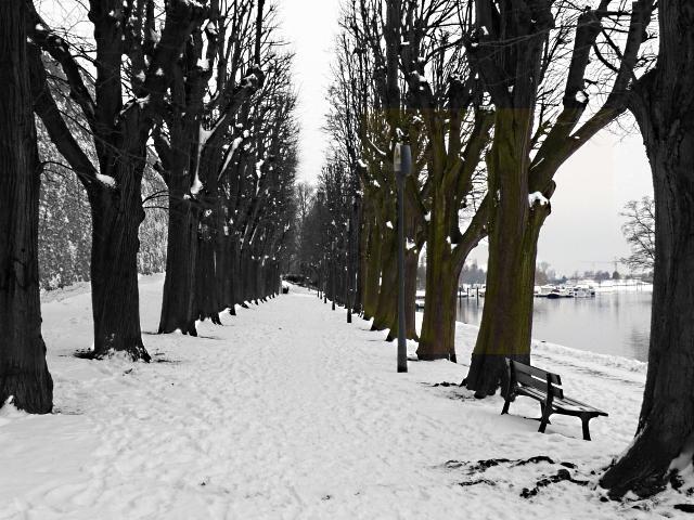 Metz sous la neige 3 26 12 2010 mp1357
