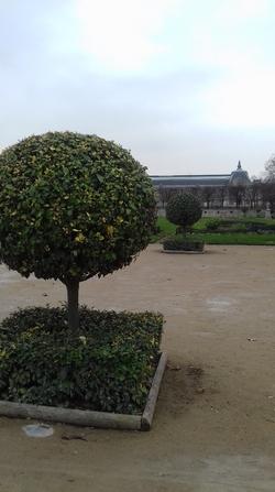 Instants parisiens