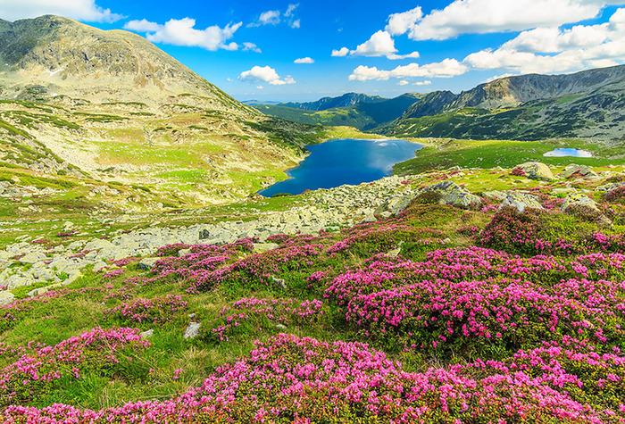La Plus Belle Route Du Monde En Roumanie