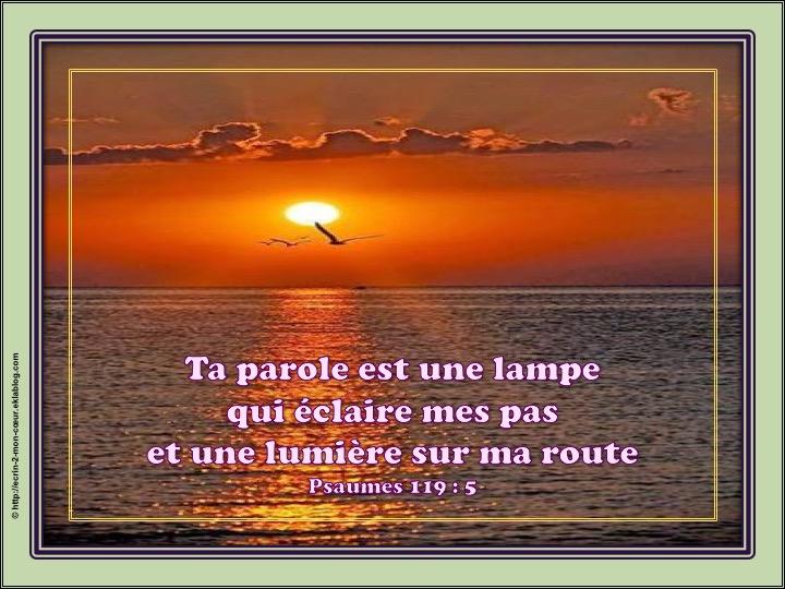 L'Eternel, notre lumière - Psaumes 119 : 5