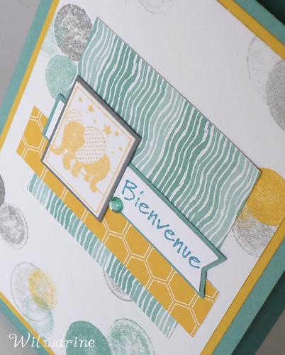 carte naissance