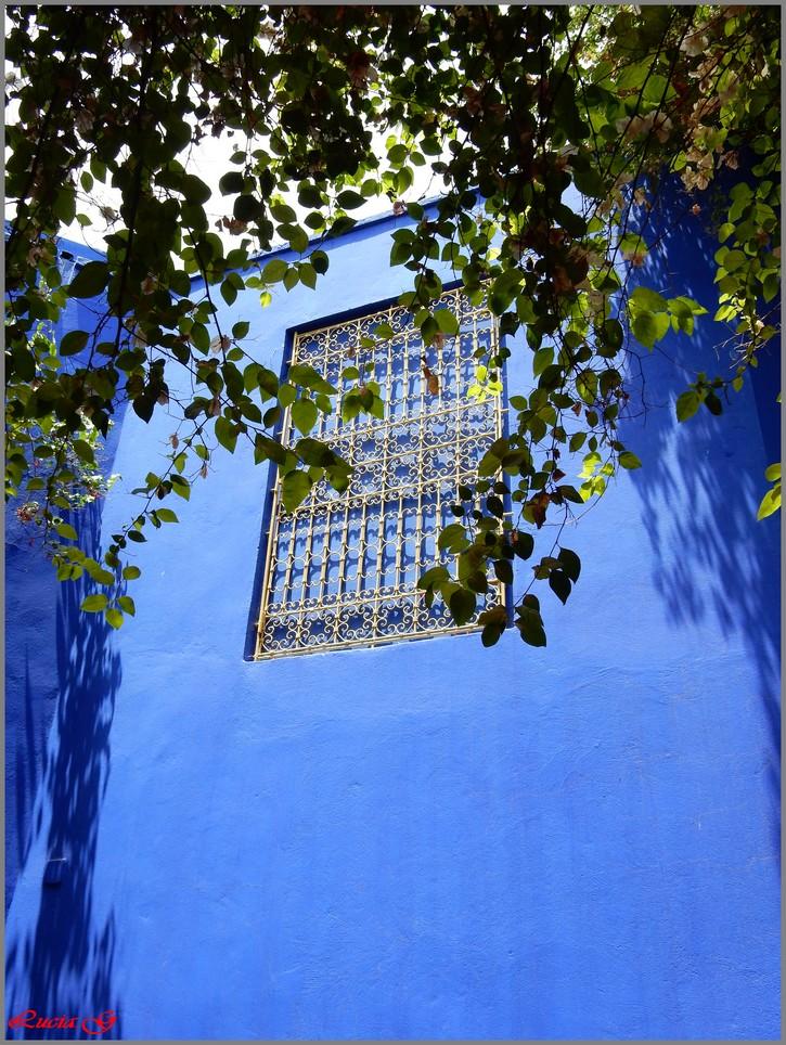 Thème : Bleu