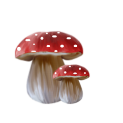 Tubes champignons