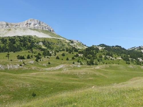 Vallon de Combeau (Haut Diois)