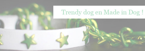 Les chiens branchés s'habillent en Made in Dog - TEST BLOG Howard le chichi