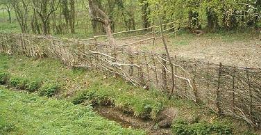 Des clôtures artistiques et naturelles ...