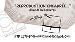 """carte """"repro encadrée"""" de Mélanie Busnel"""