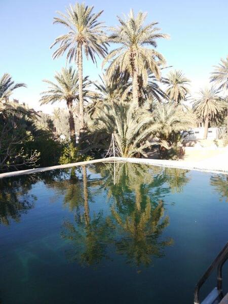 Reflet dans la piscine