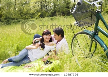 stock-photo-couple-having-a-picnic-in-a-park-smiling-12487726