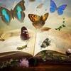 starlitebook
