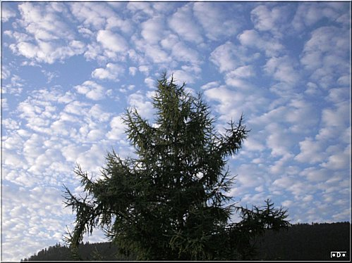 ciel-bleu-nuages.jpg