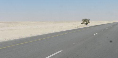 Oman mars 15 (14ème partie)