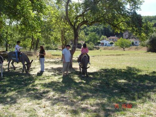 Après midi à dos d'âne 2010