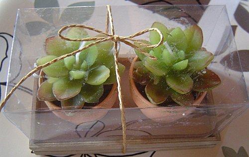 20-bougies-cactus.jpg