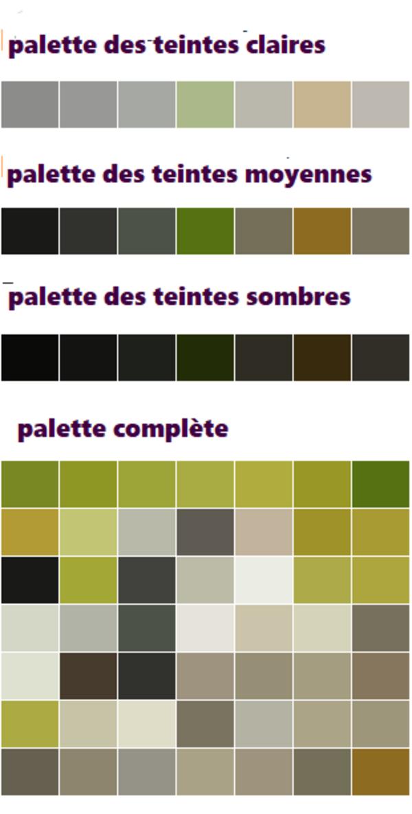 Dessin et peinture - vidéo 2721 : Comment dessiner ou peindre un Lémurien ? - pastel ou crayon pastel.