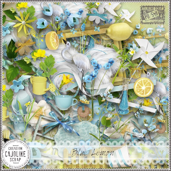 "Quickpage ""blue lemon"""