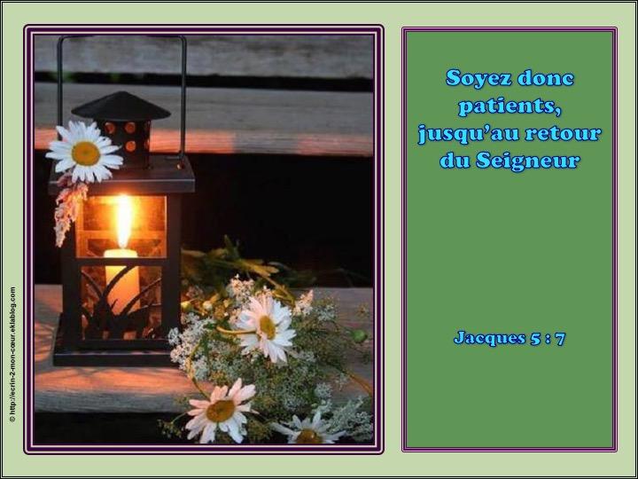 Soyez donc patients, jusqu'au retour du Seigneur - Jacques 5 : 7