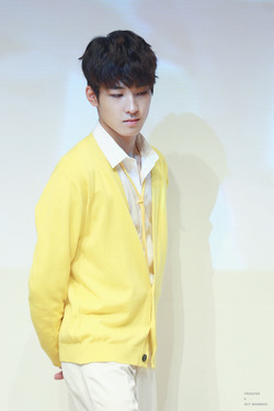 Wonwoo - Seventeen