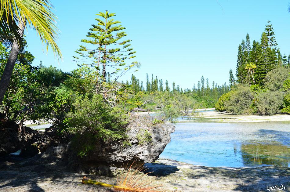 ile des pins nouvelle calédonie