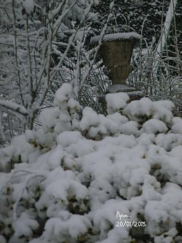 neige-20-janv-2013--16-.jpg