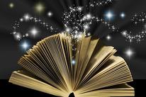 livre | le bon coté des choses