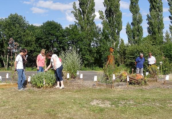 """Chaumont le Bois s'est doté d'un """"jardin des simples"""" !"""