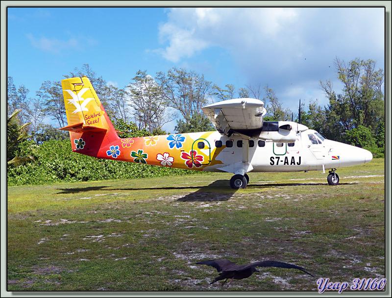 """Dés notre arrivée aux Seychelles, départ pour la petite île de """"Bird Island"""" qui porte bien son nom dans un De Havilland DHC-6 Twin Otter"""