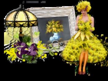 Le mimosas