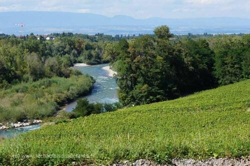 "Marinel - sentier ""Vignes de Pont"""