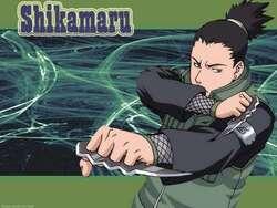Naruto et Naruto Shippuden (2)