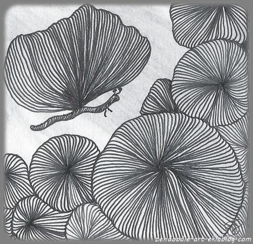 Circonvolution : le papillon zendoodle