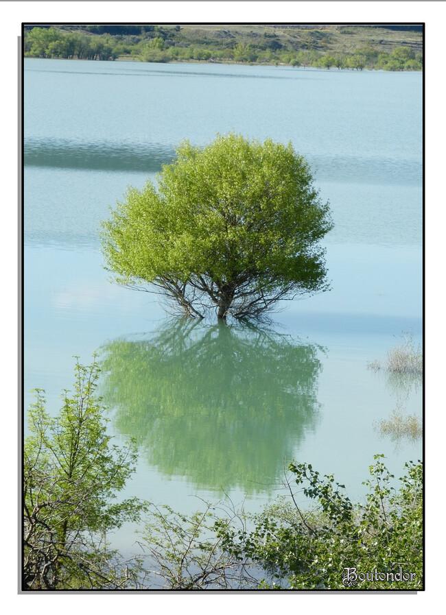 Lac Yesa - Espagne