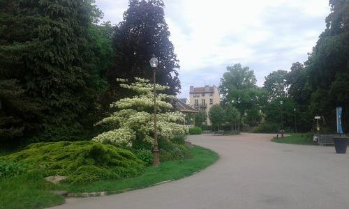 En passant par la rue Jeanne d' Arc pour aller au Parc Sainte Marie ...