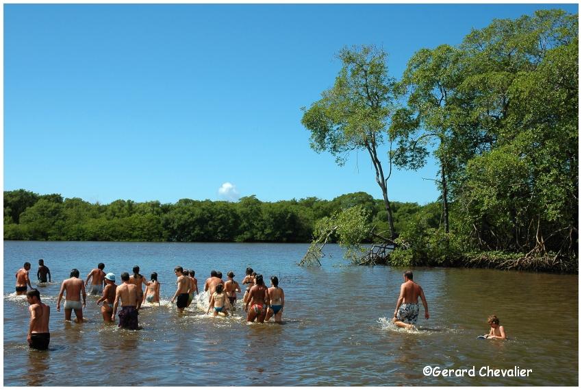 Brésil - Ilha do Sol # 5