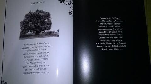 Extraits de mon recueil de textes et poésies