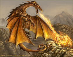 Dragons bons