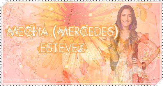 Mecha Estevez