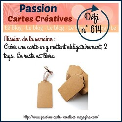 passion Cartes Créatives#614 !
