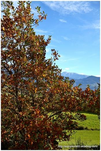 2013.10.25 Colline de Romage, Isère (région Rhône-Alpes)