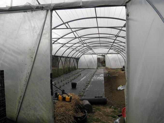 Beewell à la ferme bio