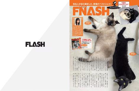 Magazine : ( [Flash] - |02/06/2020| )
