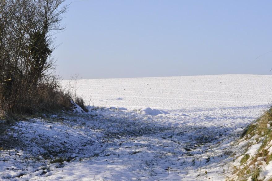 chemin-neige-2722.jpg